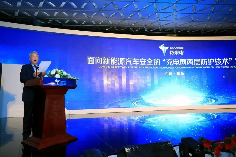 国家新能源汽车创新工程项目专家组组长王秉刚宣读评审会结论.JPG